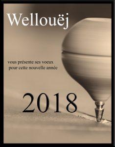voeux-2018-site